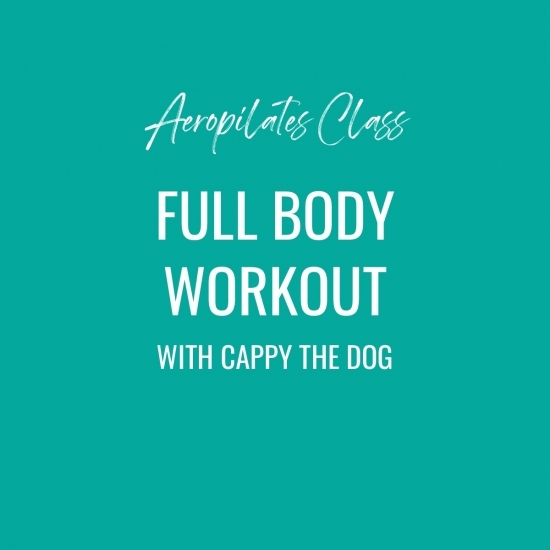 Aeropilates Class – Full Body Workout With Cappy The Dog!