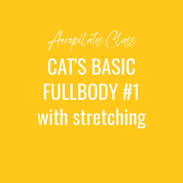Aeropilates Class – Cat's Basic Fullbody Workout # 1 with Stretching