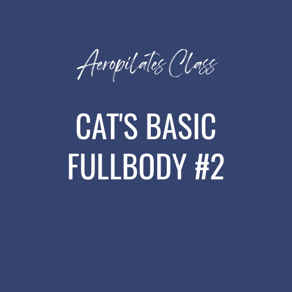 Aeropilates Class – Cat's Basic Fullbody Workout # 2