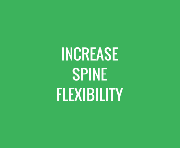 Increase Spine Flexibility