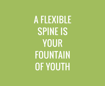 A Flexible Spine is Your Fountain of Youth
