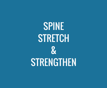 Spine Stretch and Strengthen